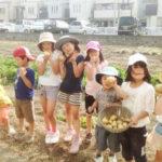 大阪の子ども料理教室キッズハンズ年間予定キッズハンズ恒例の収穫クッキング(5月前半~5月末)