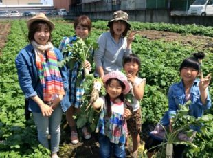 【終了しました!5月22日】 減農薬のもぎたて野菜の収穫体験とクッキング!